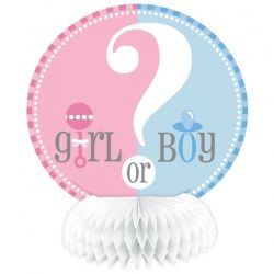 Gender Reveal Mini Honeycomb Decoration 6''
