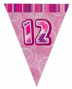 Pink Glitz 12 Party Flag Banner 9 ft