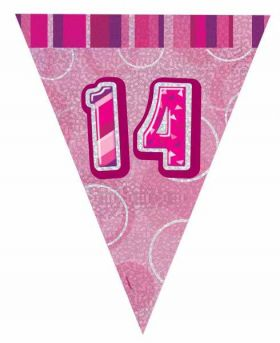 Pink Glitz 14 Party Flag Banner 9 ft