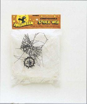 Spider & Spider Web