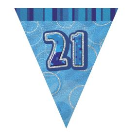 Blue 21st Birthday Party Decorations