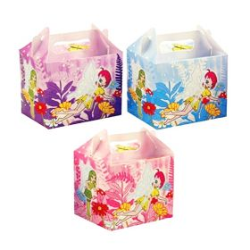 Fairy Party Boxes, pk6
