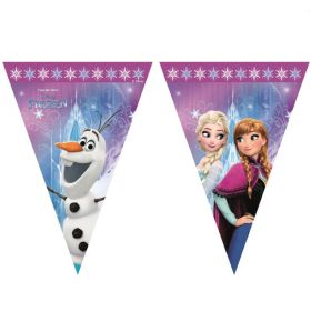 Frozen Northern Lights Triangle Flag Banner 2.3m