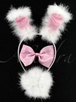 Pink Bunny Set Ears With Wire (3 Piece)