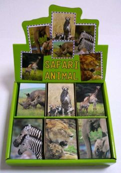Safari Notebook