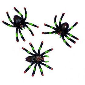 Spiders 12pk