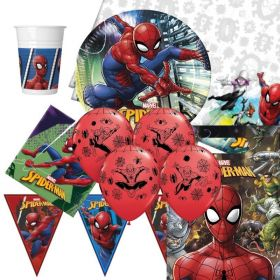 Spiderman Ultimate Party Pack
