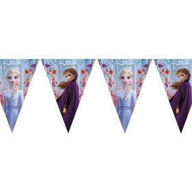 Disney Frozen 2 Party Flag Banner 2.3m