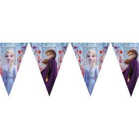 Disney Frozen 2 Party Flag Banner 2.3m