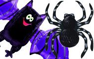 Spiders & Bats