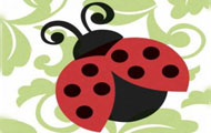 Lively Ladybugs